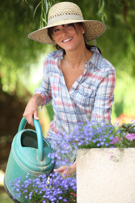 Summer Heat And Idiopathic Pulmonary Fibrosis Idiopathic