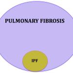Non-Idiopathic Pulmonary Fibrosis